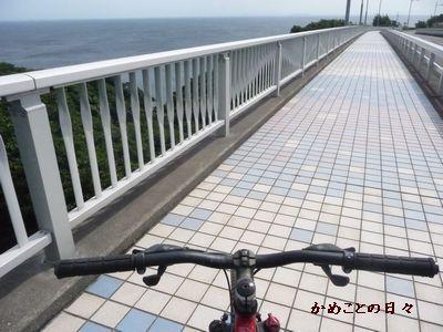 P1500708-bike2.jpg