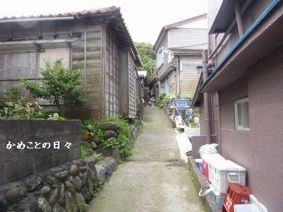 P1510019-roji.jpg