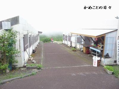 P1510057-mihara1.jpg