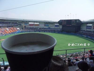 P1520205-beer.jpg