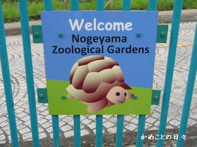 P1530611-zoo.jpg