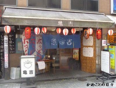 P1530873-kamekiti.jpg