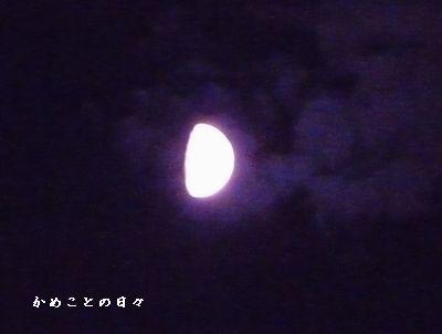 P15401381-moon.jpg