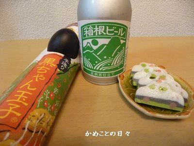 P1540248-beer.jpg