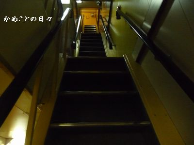 P1560823-kaidan.jpg