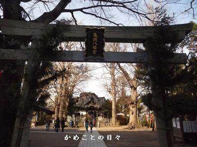 fb3898d24.jpg