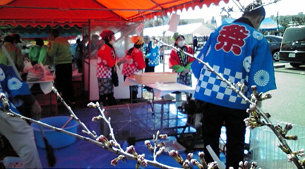 201248桜祭り
