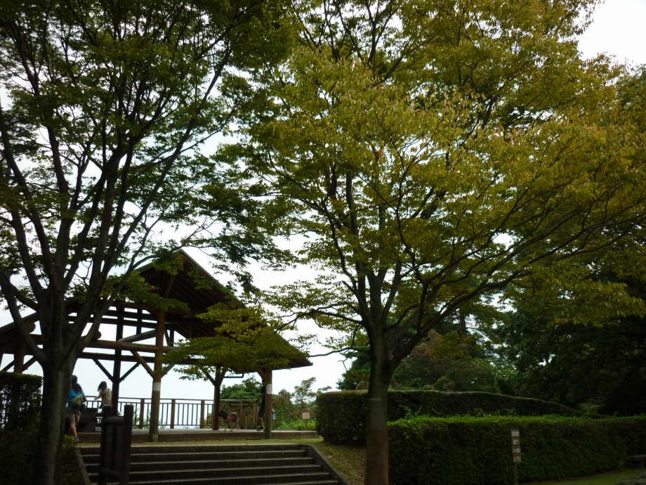 201409菰野県民の森3-04