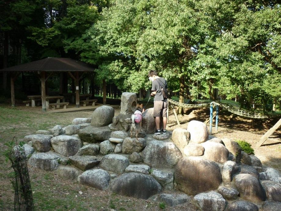 201409菰野県民の森5-03