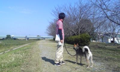201410棚ぼた散歩-05