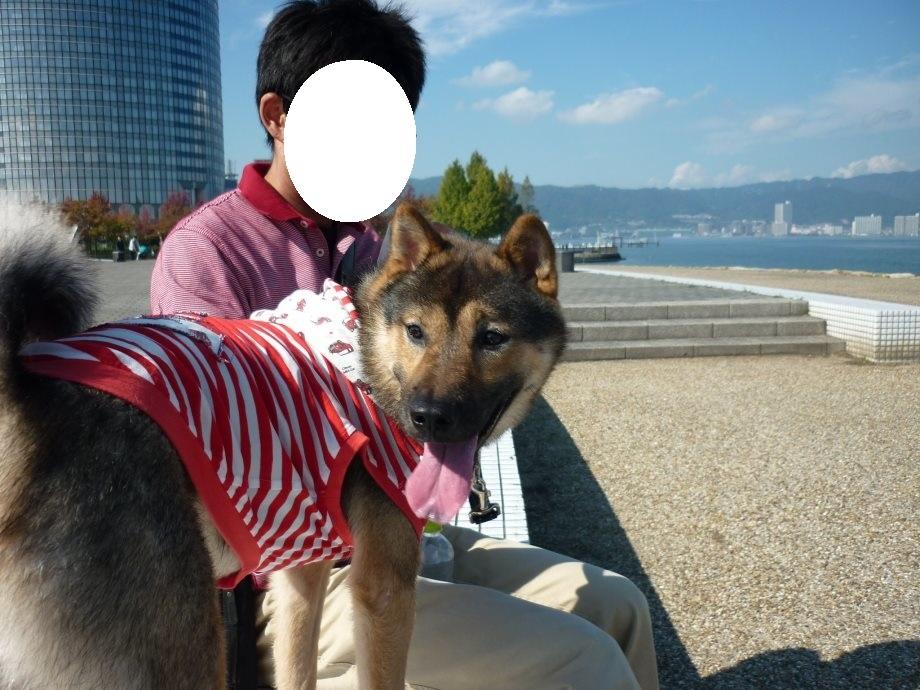 1琵琶湖畔散策-20