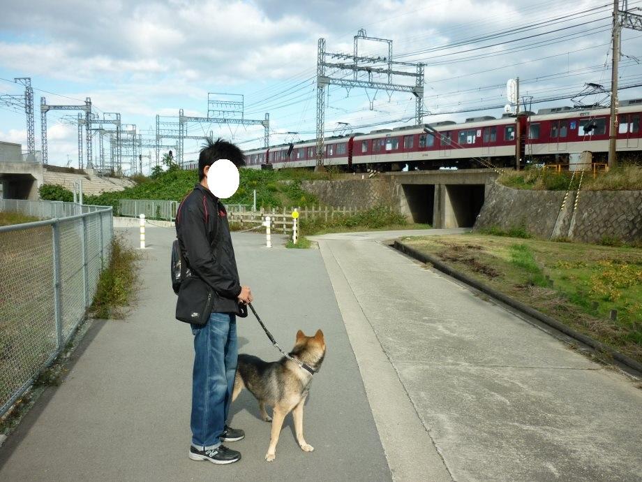 201411電車散歩-06