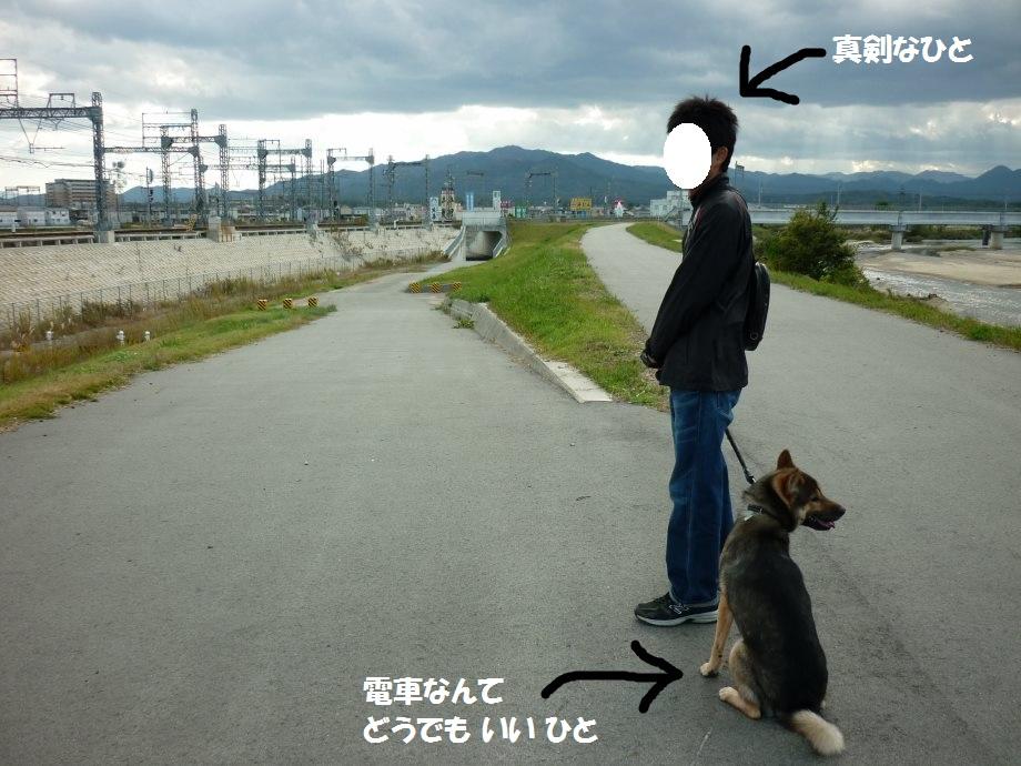 201411電車散歩-09