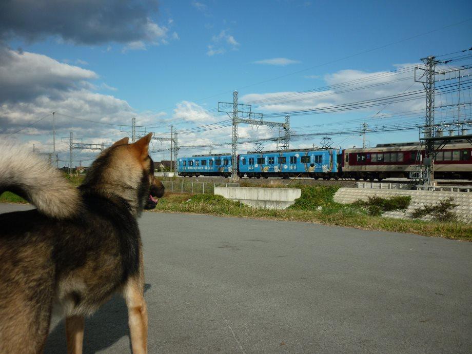 201411電車散歩-12