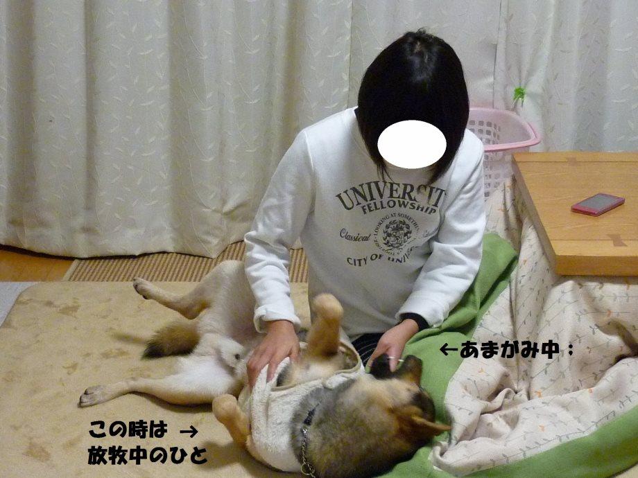 るんしゃん-04
