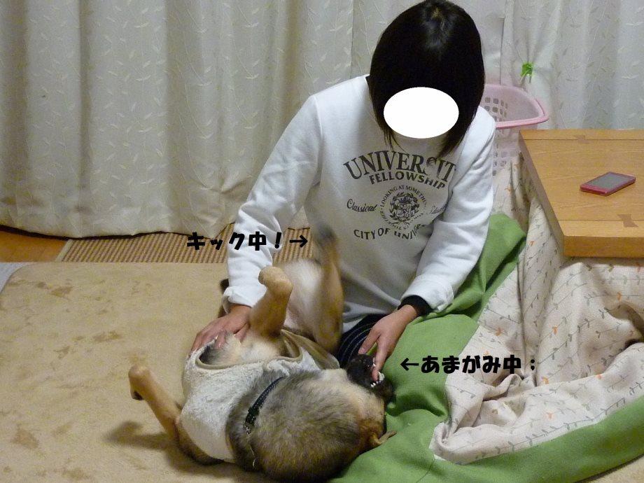 るんしゃん-05