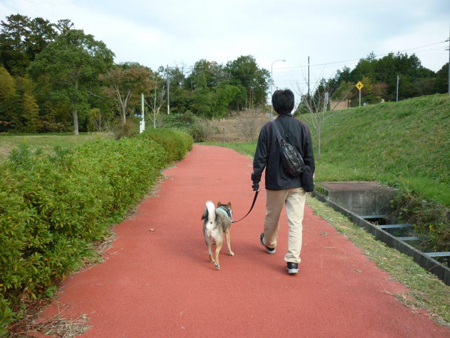 天啓公園1-09