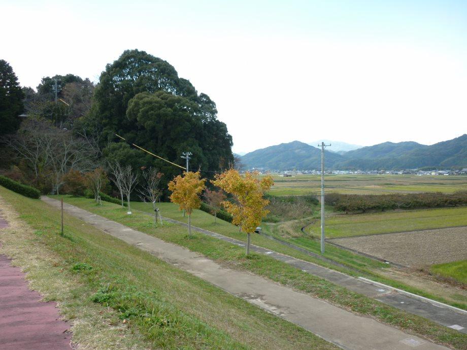 天啓公園2-03