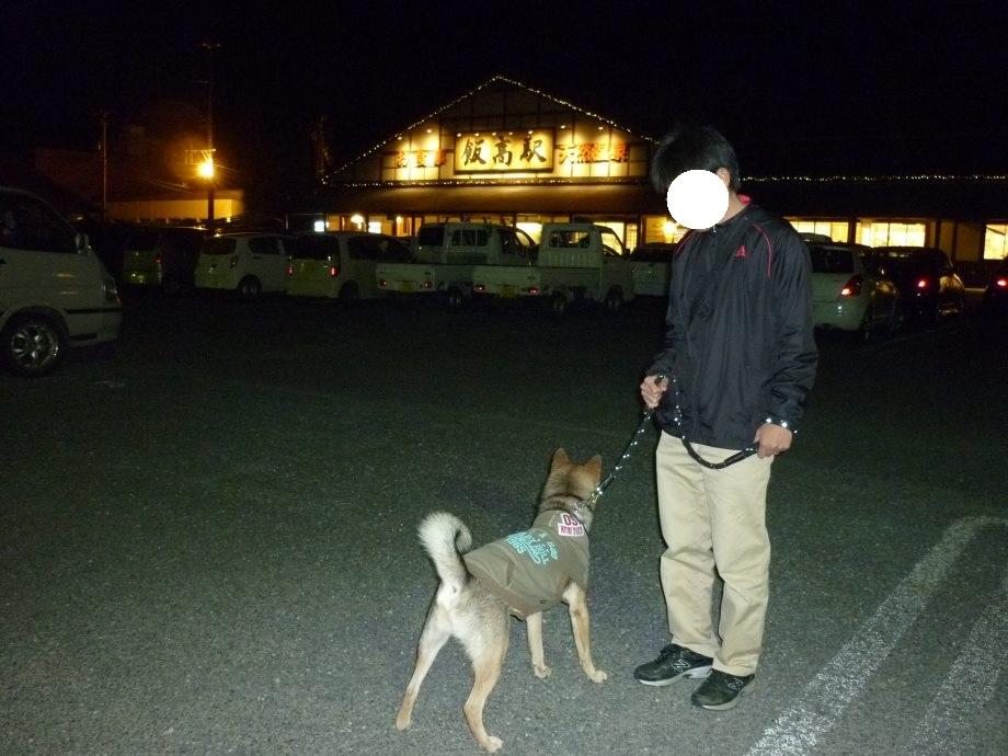 201411香肌峡飯高-08