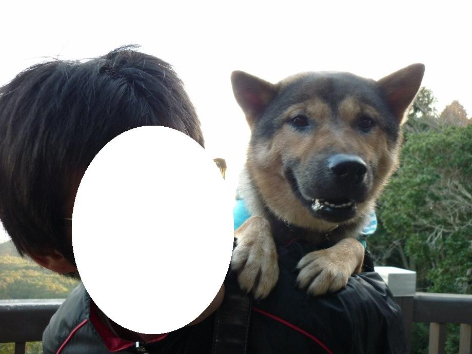 201411伊勢志摩北斗君02-11
