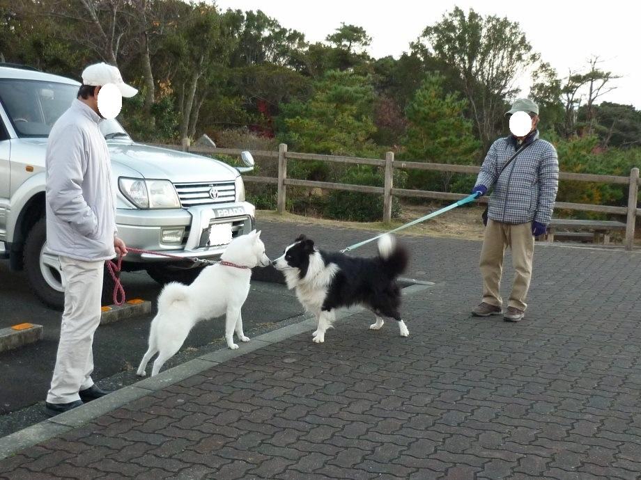 201411伊勢志摩北斗君03-14