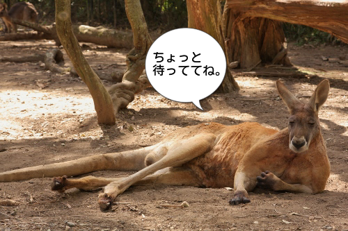 2014012901.png