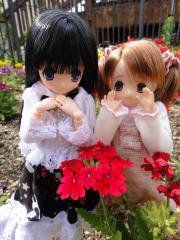 浜寺公園201105-22