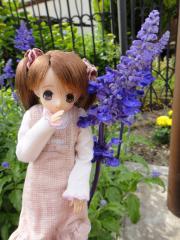 浜寺公園201105-23