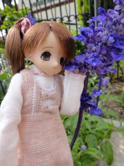 浜寺公園201105-24