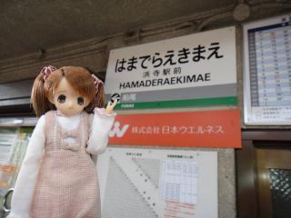 浜寺公園201105-26