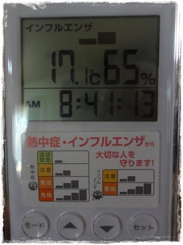 DSC08533b.jpg