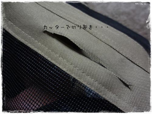 DSC08749a.jpg