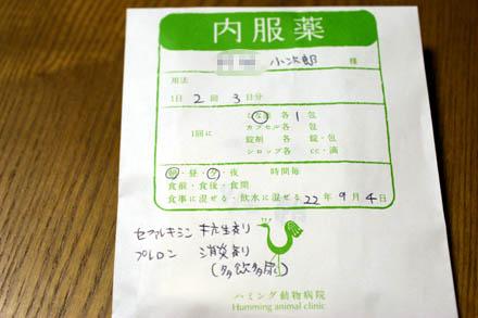 IMGP8467.jpg