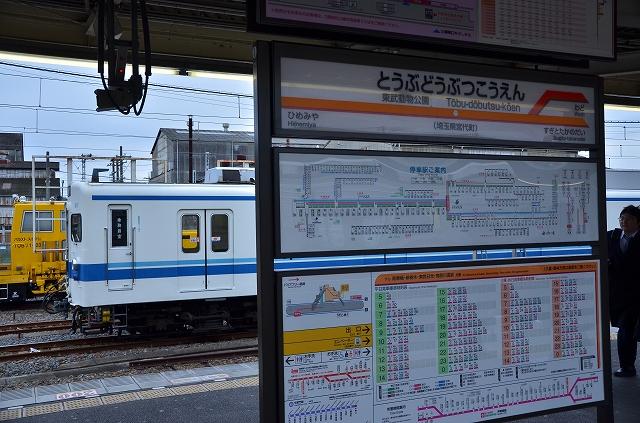 s-DSC_7364.jpg