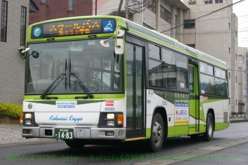 IMGP0060.jpg