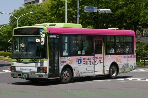 IMGP0176.jpg