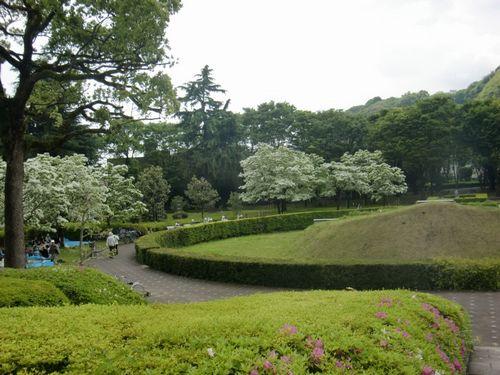 5月の城北公園