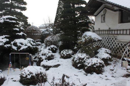 yuki_512.jpg