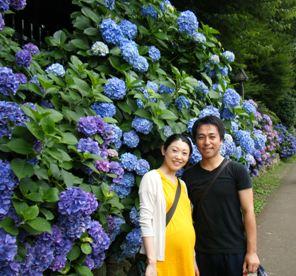 Ajisai_20100703_7.jpg