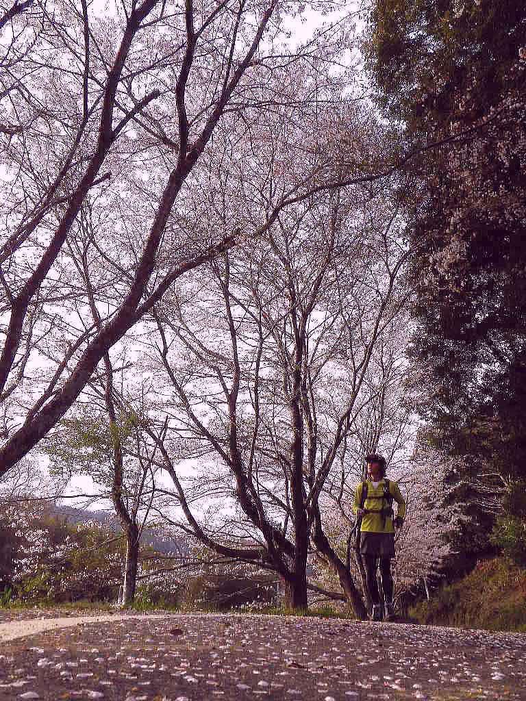 daishiyama (20)