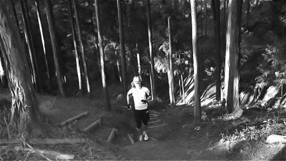 trail2_20120429124204.jpg