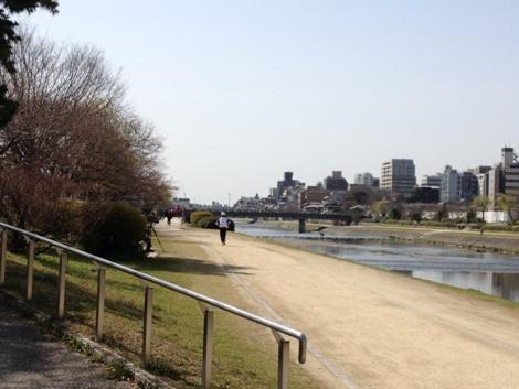 4月2日朝の鴨川…