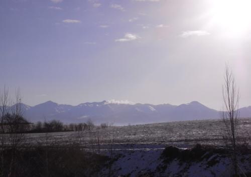 20101116_1