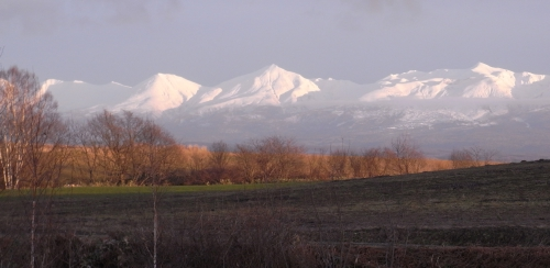 20101124_1