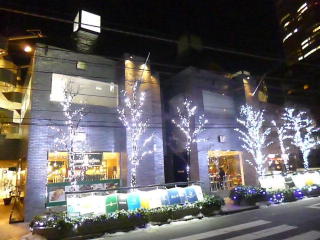 夜の六本木 ピラミデビルです