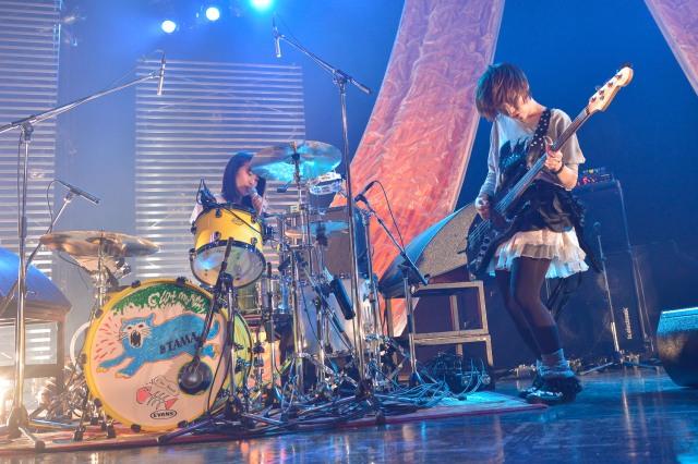 ドラムにネコのイラストが加わりました 名前はTAMA