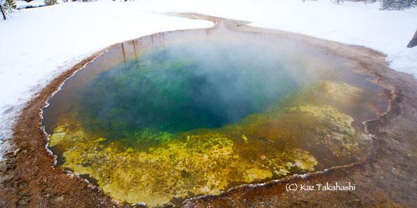 Yellowstone-冬-15