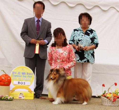 20141012-1奈良