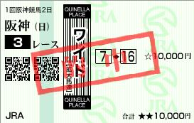 2011年2月27日(日)阪神3R的中馬券