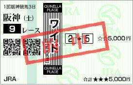 2011年3月5日(土)阪神9R的中馬券